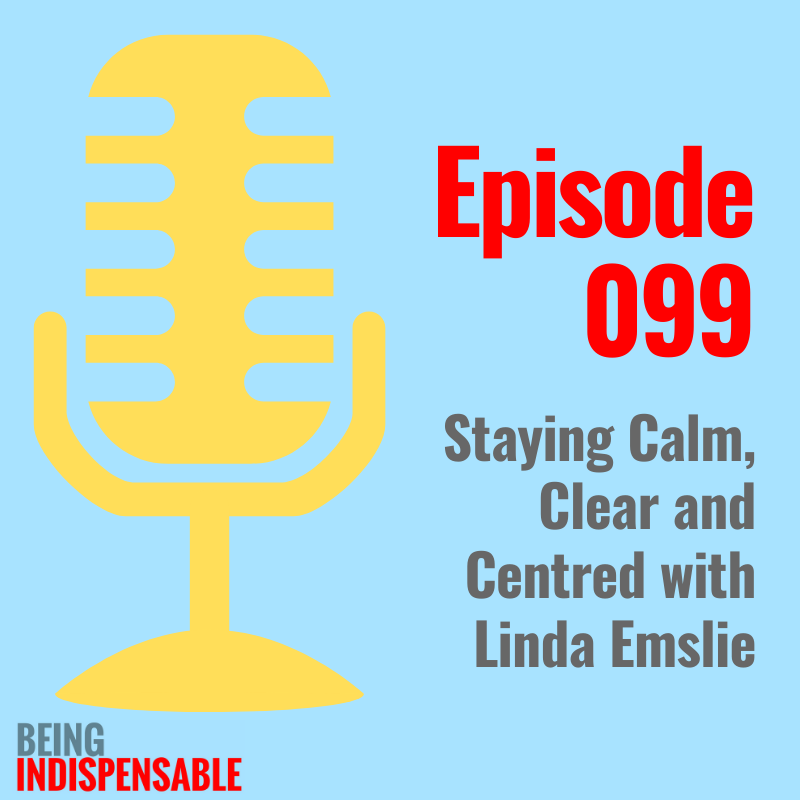 Ep 99 Being Indispensable Liz Van Vliet